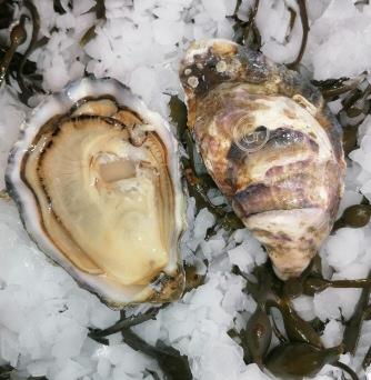 poissonnerie fruits de mer